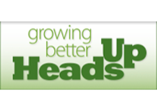 logo-headsup